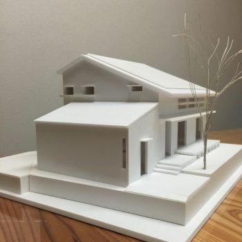 模型 (800x800)